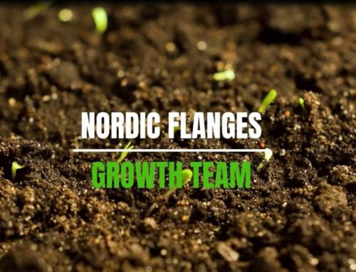 The Nordic Flanges Group's Growth Team